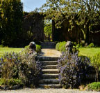 Trereife_garden